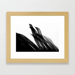 Curve and Wish Framed Art Print