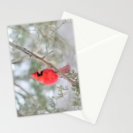 Winter's End Cardinal Stationery Cards