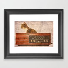 The Cat and the Radio Framed Art Print