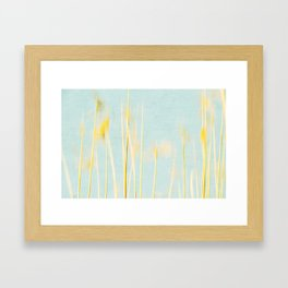 reed abstract 4 Framed Art Print