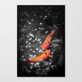 Lucky Koi Fountain Canvas Print