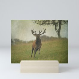 Charging Stag Mini Art Print