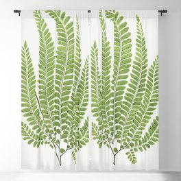 Adiantum Pubescens from Ferns British and Exotic (1856-1860) by Edward Joseph Lowe Blackout Curtain