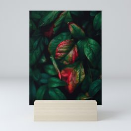 Nature Change Mini Art Print