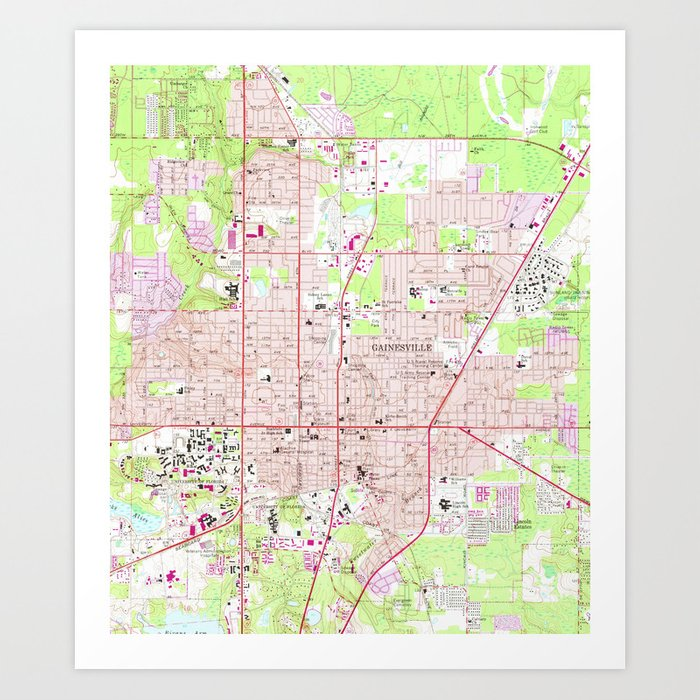 Vintage Map Of Gainesville Florida 1966 Art Print By Bravuramedia