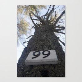 Tree 99 Canvas Print