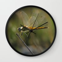 dragonfly Wall Clocks featuring dragonfly by giol's