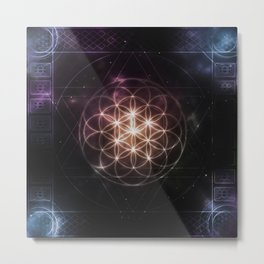 Flower of Life (Universe) Metal Print