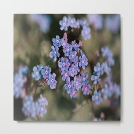 Blue Flower Sunset Metal Print
