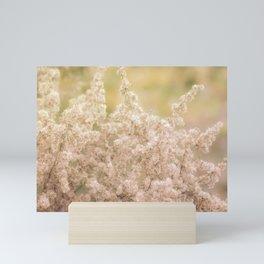 Romantic  Desert Broom Mini Art Print