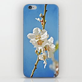 Almond Blossoms in a Clear Blue Sky iPhone Skin