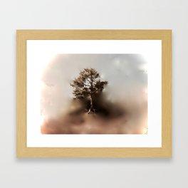Misty Tree of Life on the Coastal Edge Framed Art Print