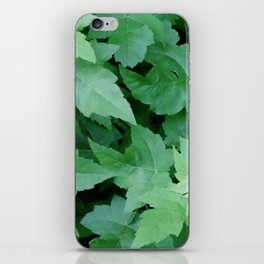 Settled iPhone Skin