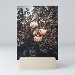 Roses after rain Mini Art Print