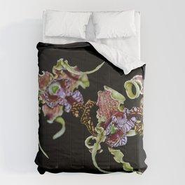 Dendrobium Spectible (The Alien Orchid) Comforters