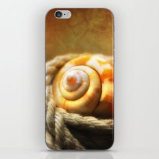 Tangled Shell iPhone & iPod Skin