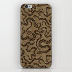 Rattlers iPhone & iPod Skin
