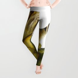 Ring-tailed Cat Vintage Drawing Leggings