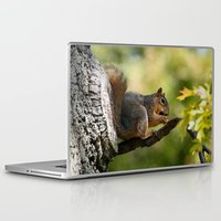 zen Laptop & iPad Skins featuring Zen by IowaShots