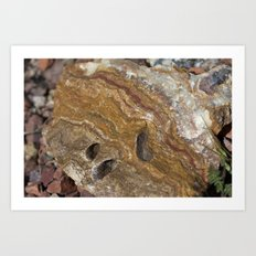 Life in Nature Art Print