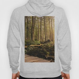 Forest Mountain Wanderlust Boardwalk - Nature Photography Hoody