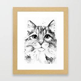 Fluffy Cat in Grey Scale Framed Art Print