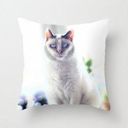 The Magic Cat Throw Pillow