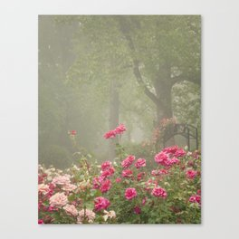 Blooms In Fog I Canvas Print
