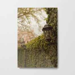 New Orleans - Ivy Garden Wall Metal Print