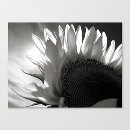 My Name is Love Canvas Print