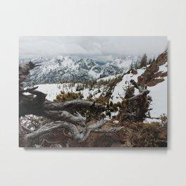 Wenatchee National Forest Metal Print