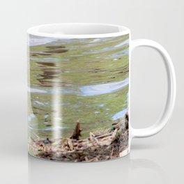 Gosling Swimming Coffee Mug