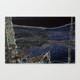 Star River Canvas Print