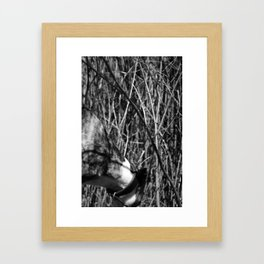 Dog and branches Framed Art Print
