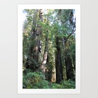 Standing With Giants Art Print