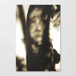 Shadows 001 Canvas Print
