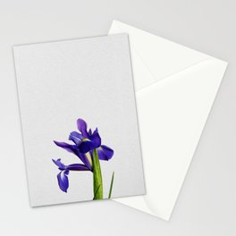 Iris Still Life, Flower Photography Stationery Cards