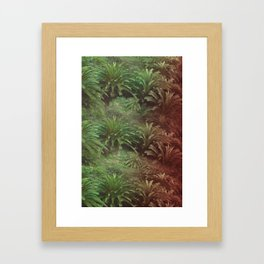 Canarian Jungle Framed Art Print