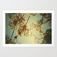 Welcome Spring   02 Art Print