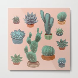 Potted Cacti and Succulents on Sahara Rose background. Metal Print