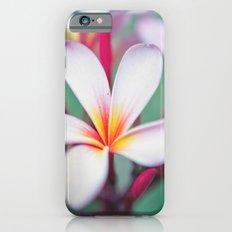 Pink Summer Slim Case iPhone 6s