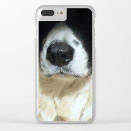 Dog close up Clear iPhone Case