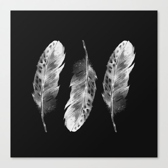 Three feathers on black background Canvas Print