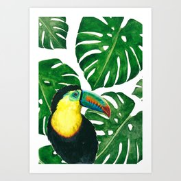 Toucan parrot with monstera leaf pattern Art Print