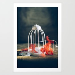 empty bird cage Art Print