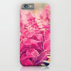 Garden Sunset  Slim Case iPhone 6s