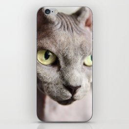 Kitty with attitude iPhone Skin