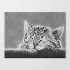 Sleepy Kitten Canvas Print