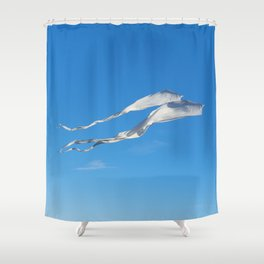 Flying High in the Sky Shower Curtain