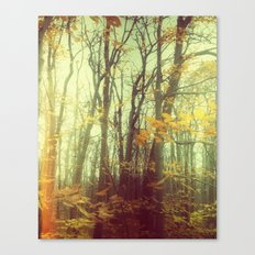 Dream State 2 Canvas Print